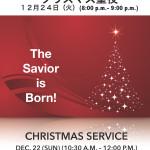 2013 クリスマス